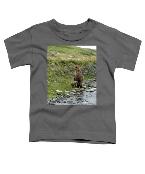 Looking Up The Bluff Toddler T-Shirt