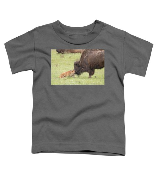 Love My Mama Toddler T-Shirt
