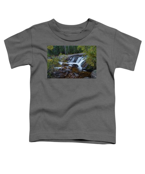 Lower Copeland Falls Toddler T-Shirt by Gary Lengyel