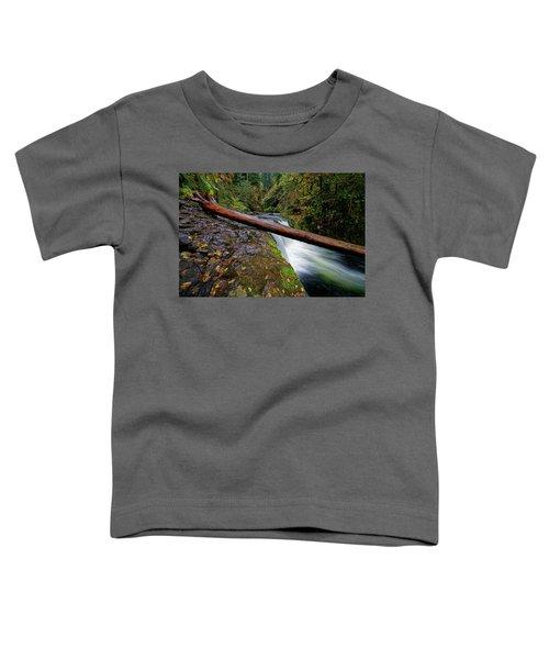 Lower Punch Bowl Falls Toddler T-Shirt