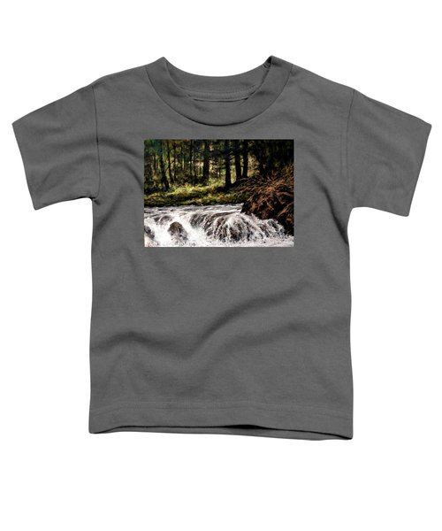 Lucia Falls In July Toddler T-Shirt