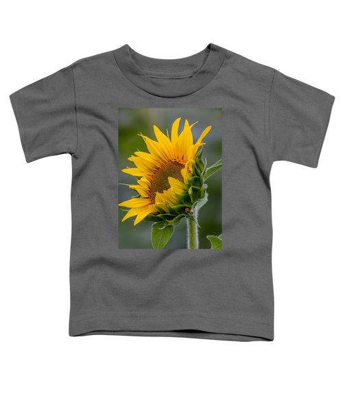 Lucky Lady Toddler T-Shirt