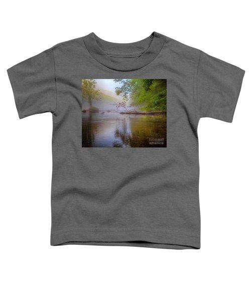 Luminosity Toddler T-Shirt