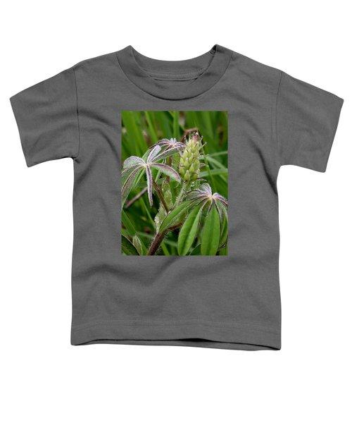 Lupine Bud Toddler T-Shirt