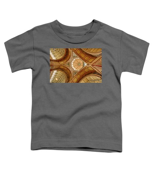 Magestic Architecture Toddler T-Shirt