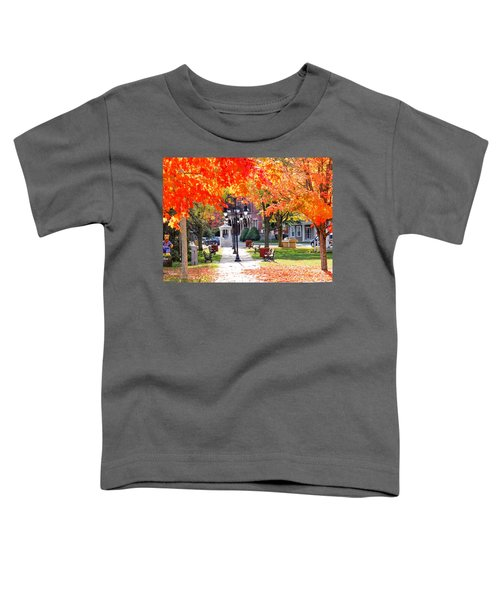 Main Street In The Fall Toddler T-Shirt