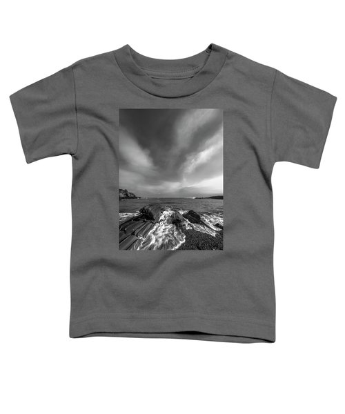 Maine Storm Clouds And Crashing Waves On Rocky Coast Toddler T-Shirt