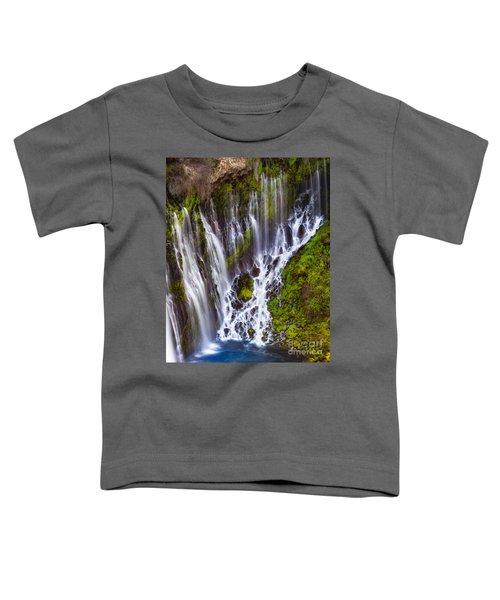 Majestic Falls Toddler T-Shirt