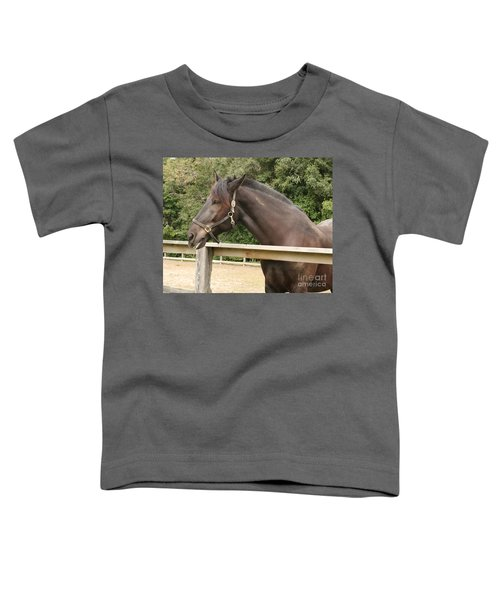 Majestic Horse  Toddler T-Shirt