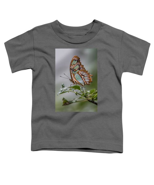 Malachite Butterfly Profile Toddler T-Shirt