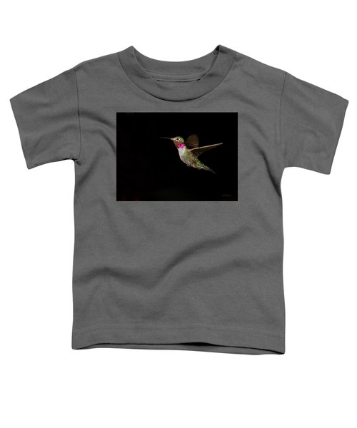 Male Broad-tailed Hummingbird Toddler T-Shirt
