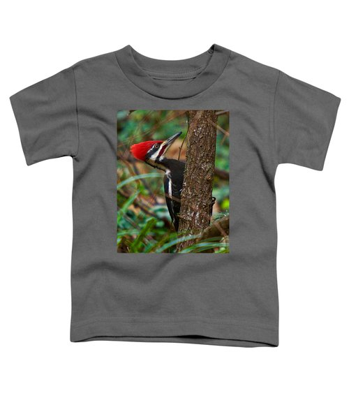 Male Pileated Woodpecker Toddler T-Shirt