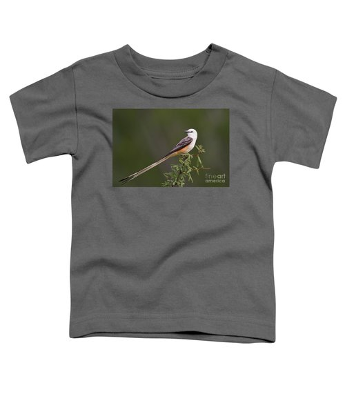 Male Scissor-tail Flycatcher Tyrannus Forficatus Wild Texas Toddler T-Shirt
