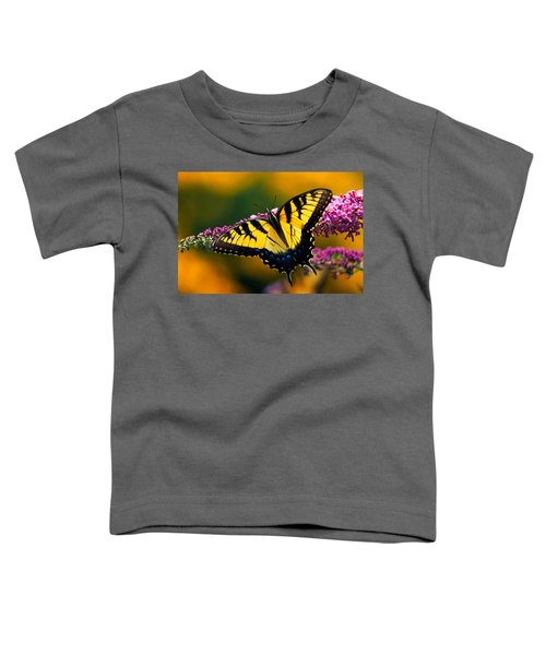 Male Tiger Swallowtail Butterfly On Toddler T-Shirt