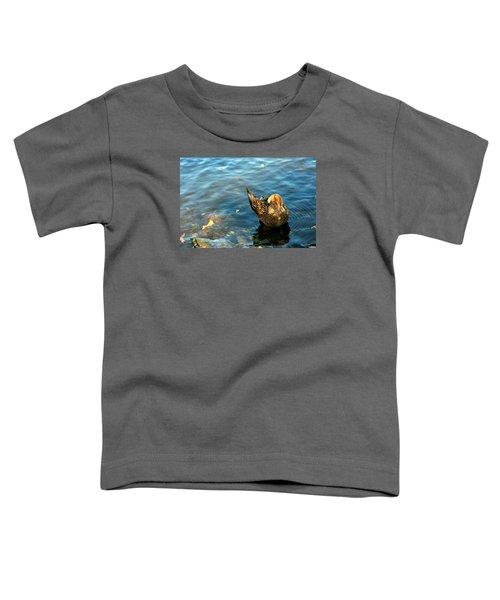 Mallard Duck In The Fox River Toddler T-Shirt