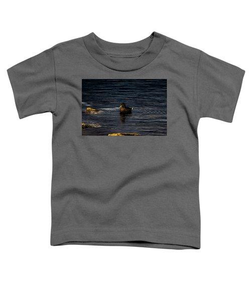 Mallard Toddler T-Shirt