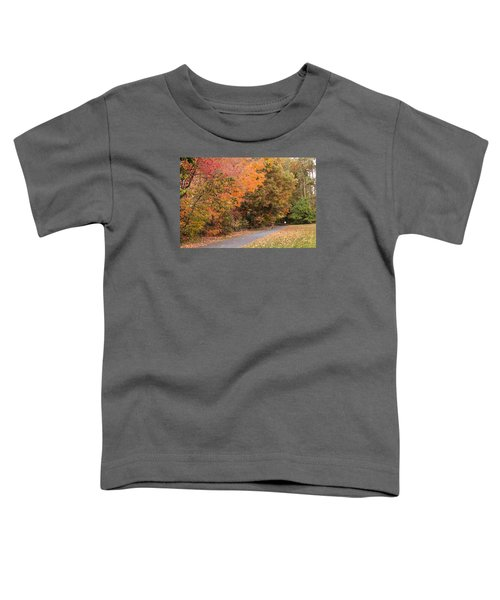 Manhan Rail Trail Fall Colors Toddler T-Shirt