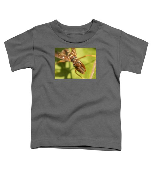 Mantid Fly Toddler T-Shirt