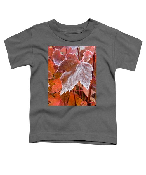 Toddler T-Shirt featuring the photograph Maple Frost  by Doug Gibbons