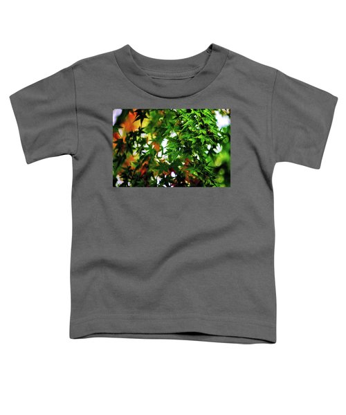 Maple In The Mist Toddler T-Shirt