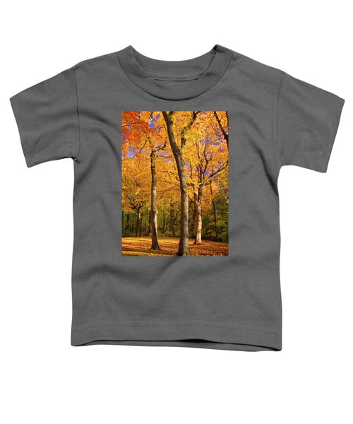 Maple Treo Toddler T-Shirt