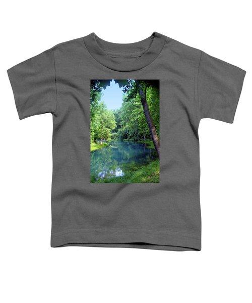 Maramec Springs 2 Toddler T-Shirt