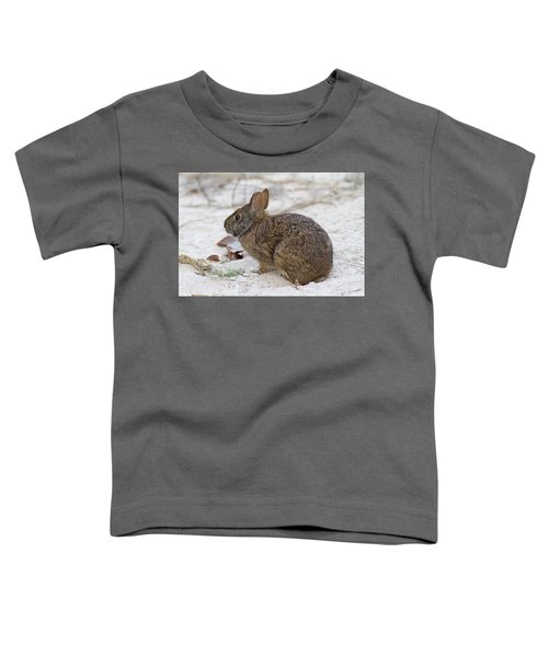 Marsh Rabbit On Dune Toddler T-Shirt