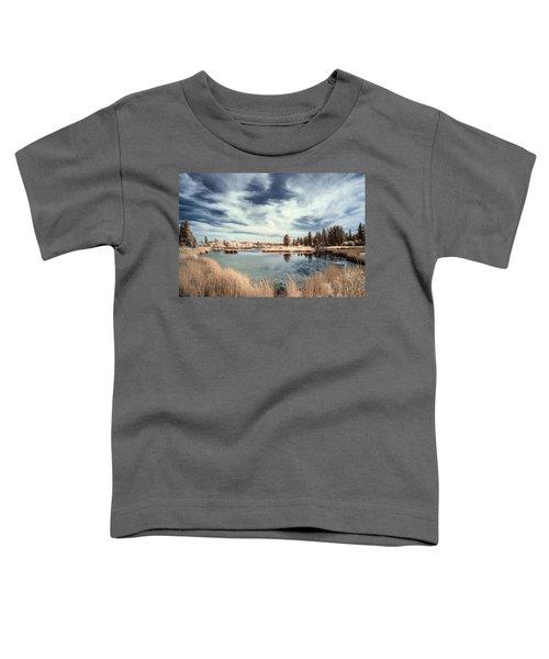 Marshlands In Washington Toddler T-Shirt
