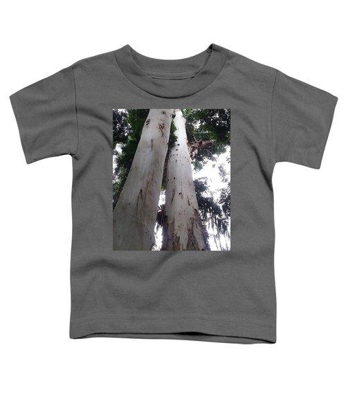 Mary Cairncross Rainforest  Toddler T-Shirt