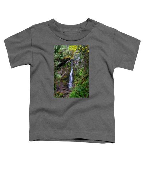 Marymere Falls Toddler T-Shirt