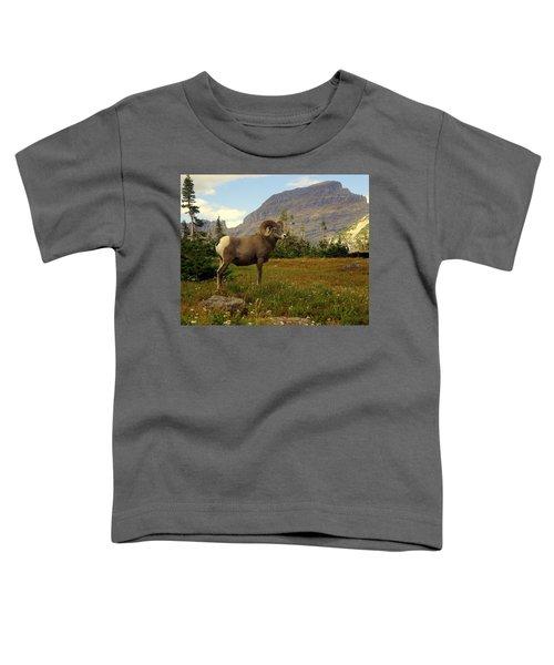 Master Of His Domain Toddler T-Shirt
