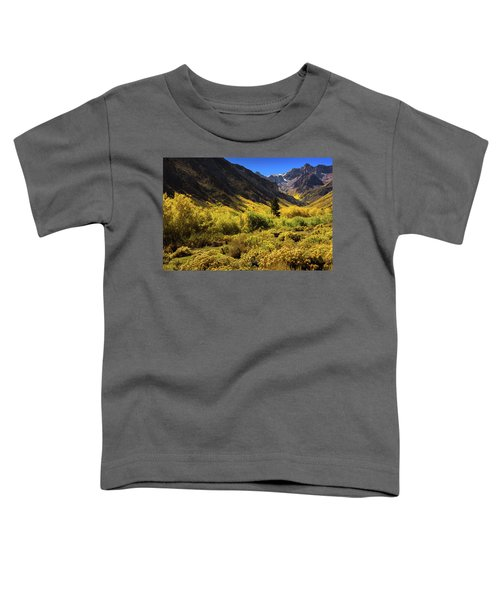 Mcgee Creek Alive With Color Toddler T-Shirt