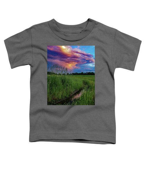 Meadow Lark Toddler T-Shirt