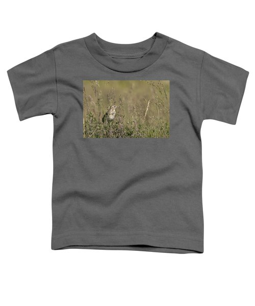 Meadow Pipit Toddler T-Shirt