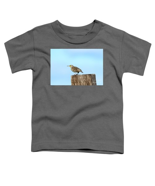 Meadowlark Roost Toddler T-Shirt by Mike Dawson