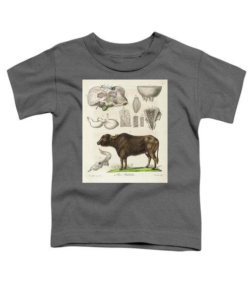 Medical Zoology Or Fair Presentation Toddler T-Shirt