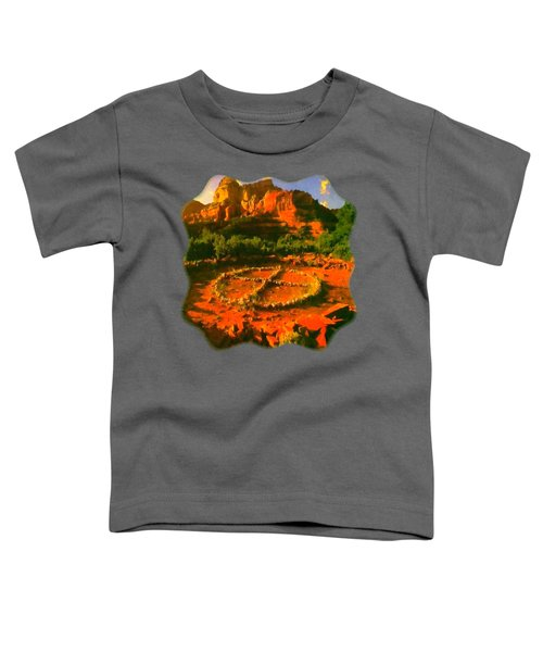 Medicine Wheel Toddler T-Shirt by Raven SiJohn