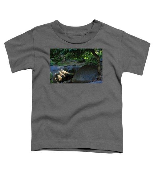 Meditation Path Toddler T-Shirt