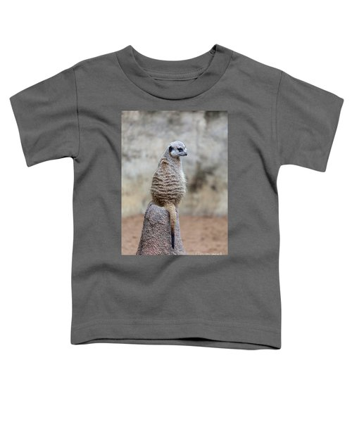 Meerkat Sitting And Looking Right Toddler T-Shirt