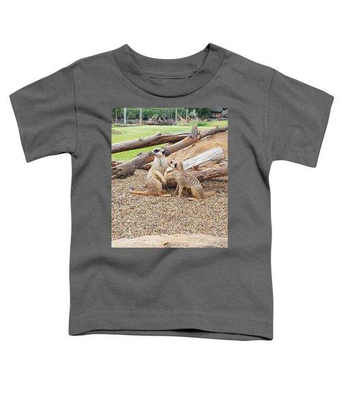 Meerkats  Toddler T-Shirt
