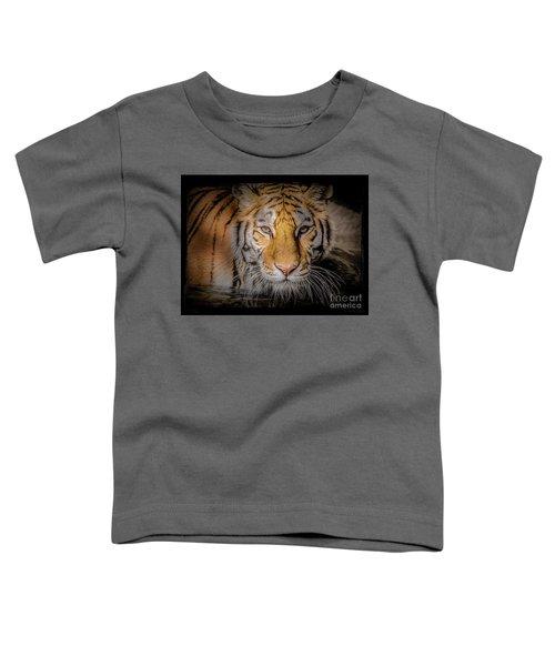 Meet My Gaze Toddler T-Shirt
