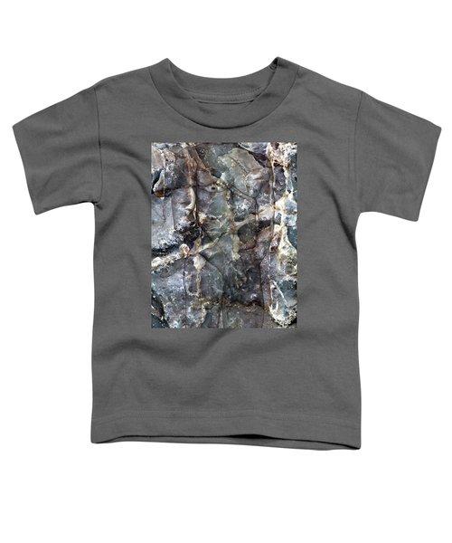 Metamorphosis  Male Toddler T-Shirt