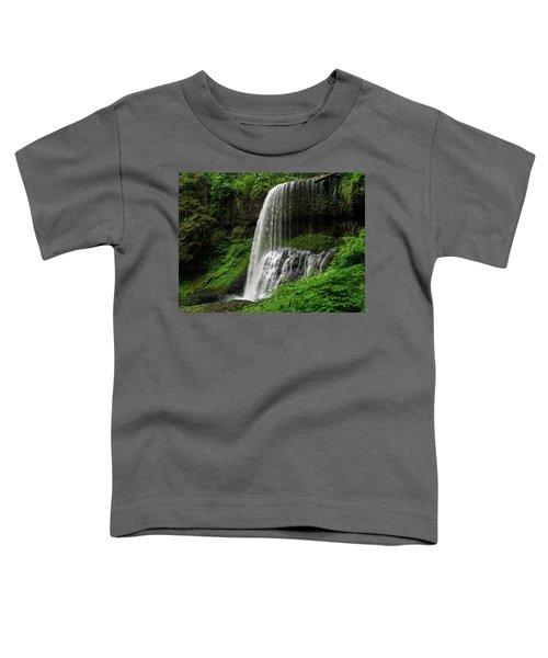 Middle Falls Toddler T-Shirt
