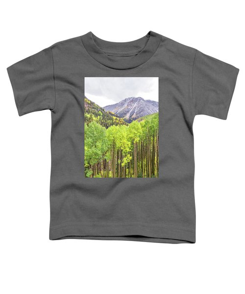 Miguel County Colorado Toddler T-Shirt