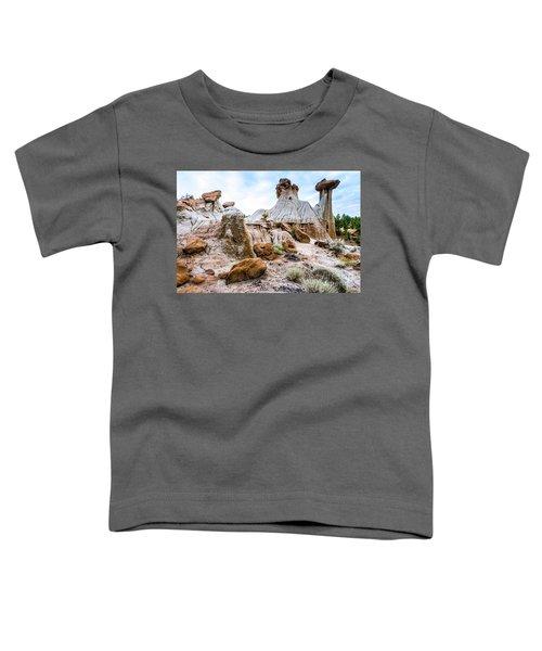 Mikoshika State Park Toddler T-Shirt