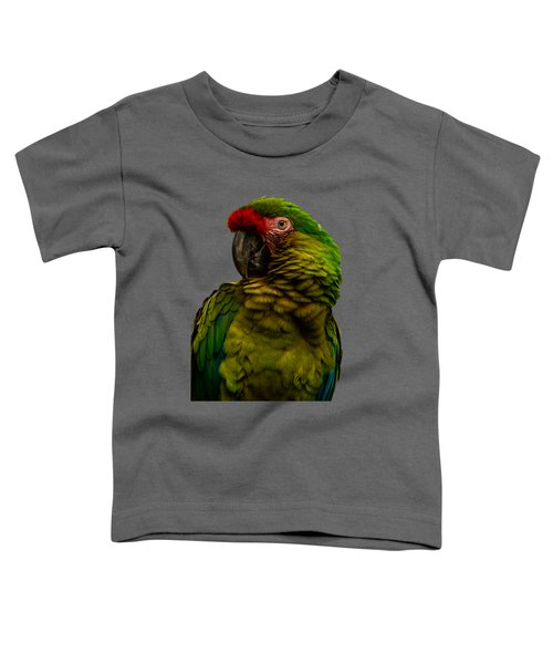 Military Macaw Toddler T-Shirt by Zina Stromberg