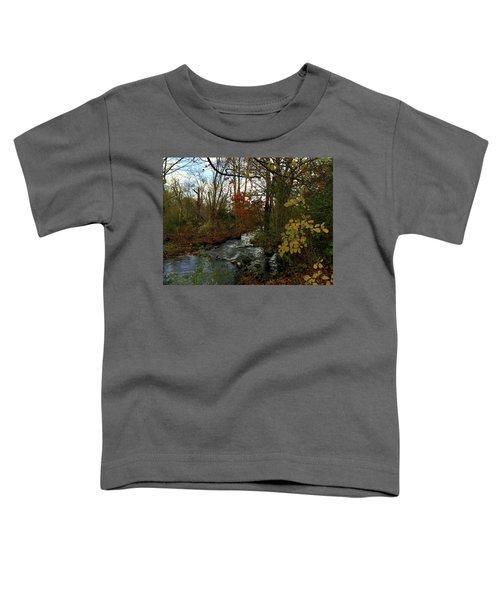 Mill Creek, Sandwich Massachusetts Toddler T-Shirt