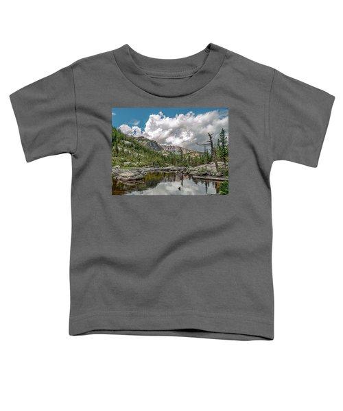 Mills Lake 5 Toddler T-Shirt