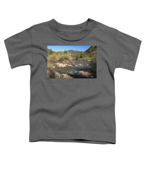Mineral Creek Toddler T-Shirt
