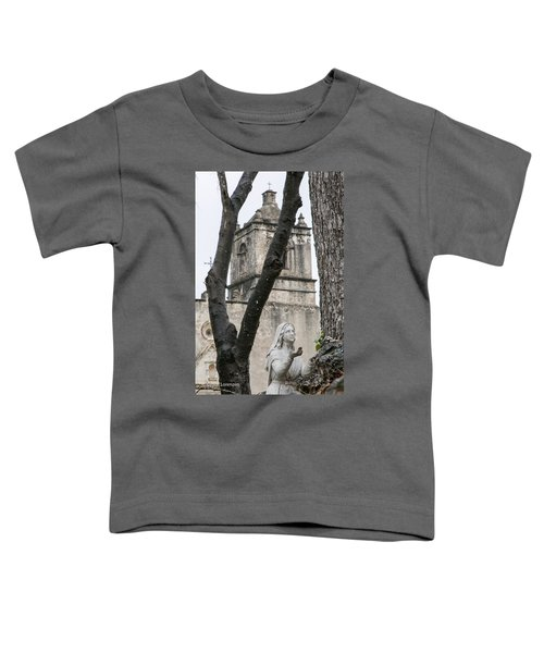 Mission Concepcion Closeup With Icon Toddler T-Shirt